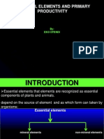Essential Elemnet and Primary Productivity_ppt