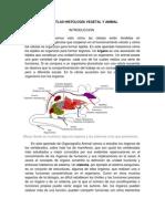 Atlas Histología Vegetal y Animal