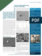 Newsletter 06 e