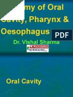 1 Anatomy of Oral Cavity Pharynx Oesophagus