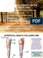 A Practica Manual on Lower Limb