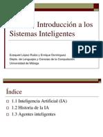 Introduccion a Los Sistemas Inteligentes