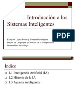 Introduccion a Los Sistemas Inteligentes