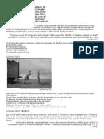 Revisão Sociologia - Ficha Da Aula