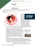 El síndrome de Anna Karenina _ El País Semanal _ EL PAÍS.pdf