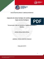 RUIZ_LEVEAU_EUNICE_ADQUISICION_SISTEMA.pdf