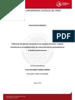 Torres Jimenez Lucas Autoria Participacion (1)
