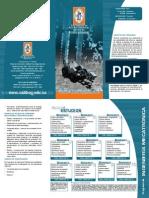 Ing Mecatronica (1).pdf