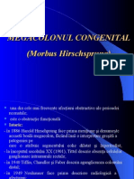 Megacolon Congenital