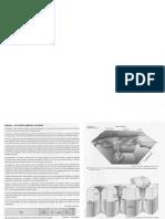 Ficha de geologia