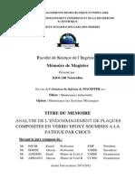 Djouabi Nourredine.pdf