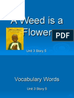 A Weed is a Flower.ppt
