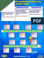 Diferencia entre programador junior, semi senior y senior.pdf