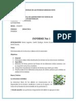 Informe de Materiales Estructuras