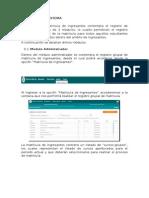 Manual Siga2