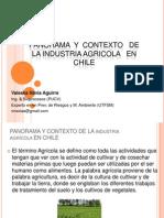 1 Aiep Panorama y Contexto de La Agricultura en Chile (1)