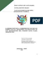 Proyecto Maestria Sobreprotección Salud Mental_Betty Zapana (2011)