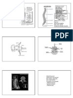 BIOMECANICA DE LA COLUMNA 3.pdf