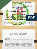 MICROBIOLOGIA proteus vulgaris