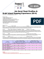 311012 4D SuratThani Fireflies n Krabi Island Hopping Experience GV4
