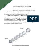 Formarea Prin Deformare Plastica -IfI
