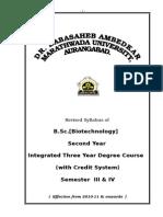 b.sc. Biotechnology Sem.iii & IV Syllabus