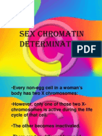 Sex Chromatin Determination