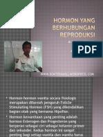 32956451-Hormon-Yang-Berhubungan-Reproduksi.ppt