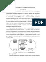 Planejamento e Controle de Capacidade- PPCP