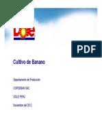 Labores Clave en El Cultivo de Banano_Eugenio Guerrero