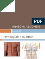 Anatomi-Abdomen.ppt