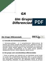 HOMO-Um Grupo Diferenciado