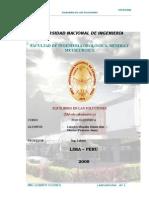 Firme 3er Lab de Fico[1]