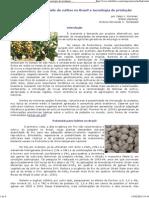 Pistache Possibilidade de Cultivo No Brasil e Tecnologia de Produção