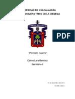 Reporte Polímero Caucho - Seminario