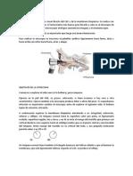 Otoscopia Tema 4