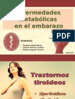 Expo Tirioides