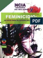 2008 Violencia de Genero Contra Las Mujeres