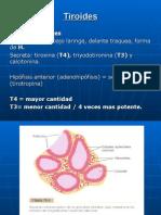 3.Tiroides 3 (1)
