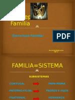 Conce p Familia 2