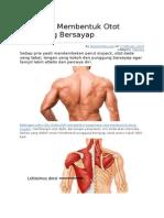 4 Latihan Membentuk Otot Punggung Bersayap