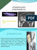 Enfermedades Cromosomicas 1230506995363239 1