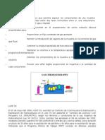 CROMATOGRAFO.docx