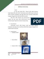 Artikel Mineral Sulfat