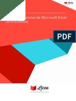 Curso Profesional Microsoft Excel 2010 Online