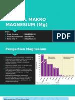Mineral Makro Magnesium (Mg)