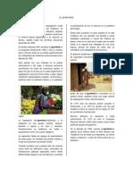 EL APARTHEID.pdf