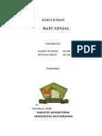 BATU GINJAL IIN.docx