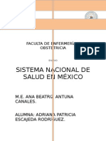 ENSAYO El Sistema Nacional de Salud en Mex