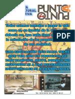 REVISTA Punto a Punto n°94 febrero 2015